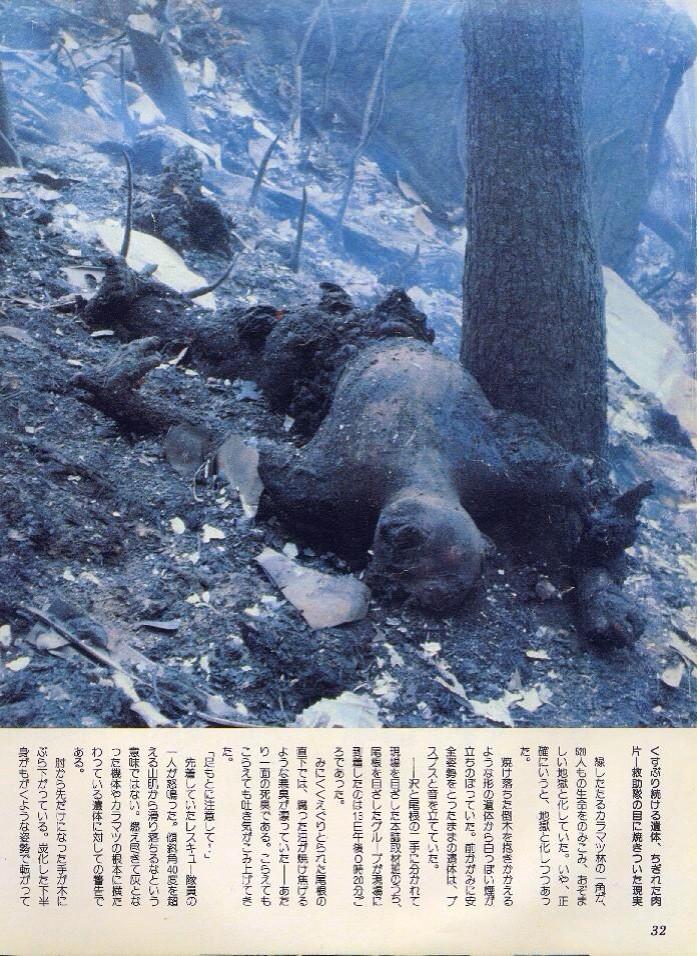 日航機墜落事故の遺体ってそんなに凄かったの?